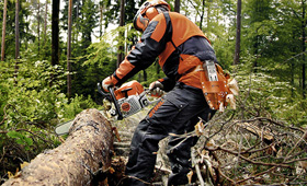 Petrol chain saws for forestry